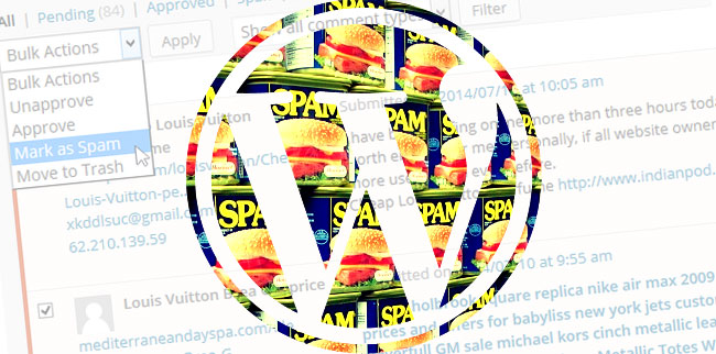 Getting rid of Wordpress spam comments